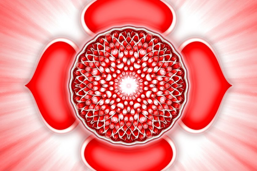 The root to it all – Muladhara